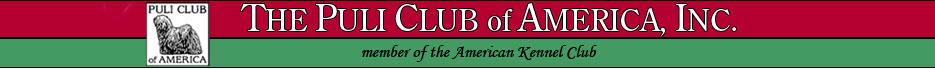 Puli Club of America