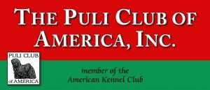 PCA-web-banner