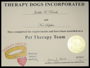 therapy certificate